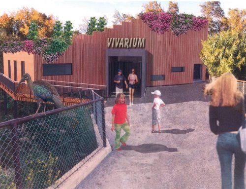 Renovació del Vivarium
