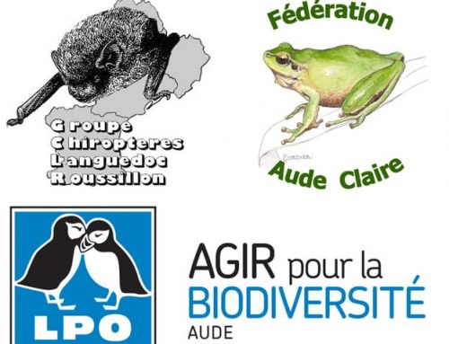 Fonds de soutien aux associations locales de protection de la nature : les lauréats !
