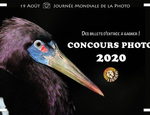 Concours photo de la Réserve Africaine de Sigean 2020