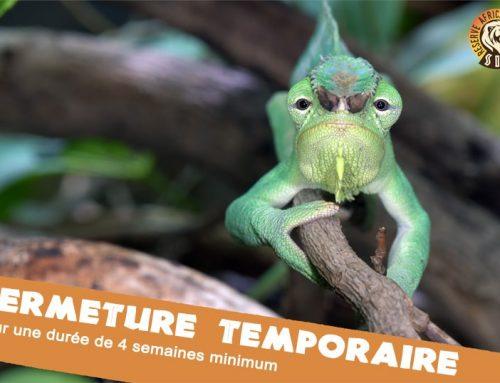 Fermeture temporaire – Covid19
